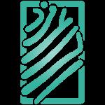 Ali-Logo-Color